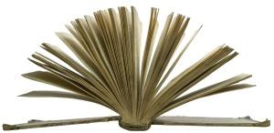 book-548649_1280